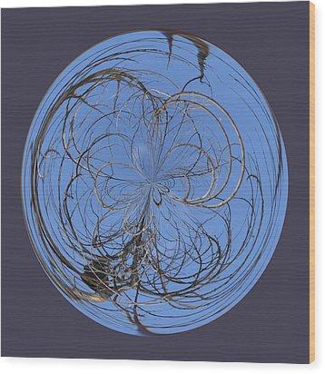 Branch Orb Wood Print