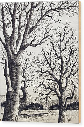 Wood Print featuring the drawing Branches by Carol Hart
