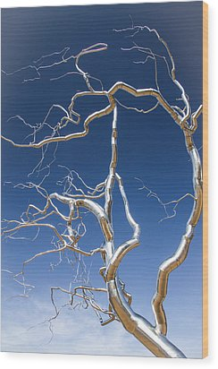Branches Of Silver Wood Print