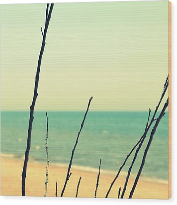 Branches On The Beach Wood Print by Michelle Calkins