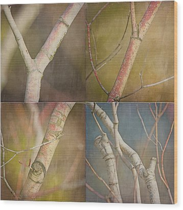 Branches Times Four Wood Print by Bonnie Bruno
