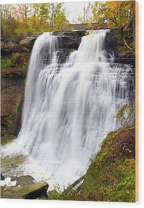 Brandywine Falls Wood Print by David Yunker