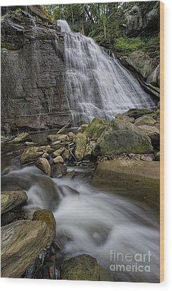 Brandywine Flow Wood Print by James Dean