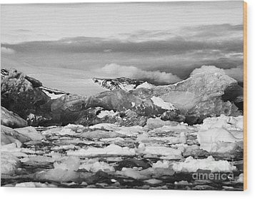 brash sea pack ice forming together with dirty blue iceberg as winter approaches cierva cove Antarct Wood Print by Joe Fox