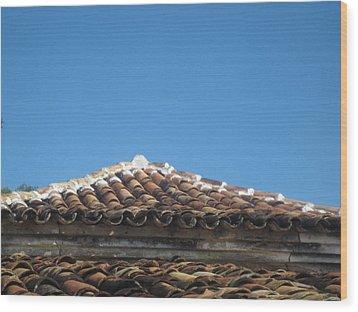 Brasil Rural 6 Wood Print by Maria Akemi  Otuyama