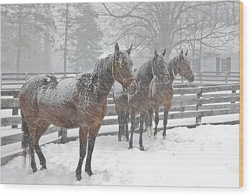 Wood Print featuring the photograph Braving The Storm by Gary Hall