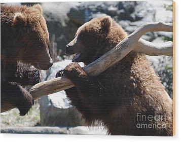 Brawling Bears Wood Print by DejaVu Designs