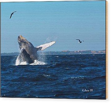 Breaching Whale Wood Print