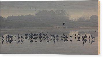 Break Of A New Day Wood Print