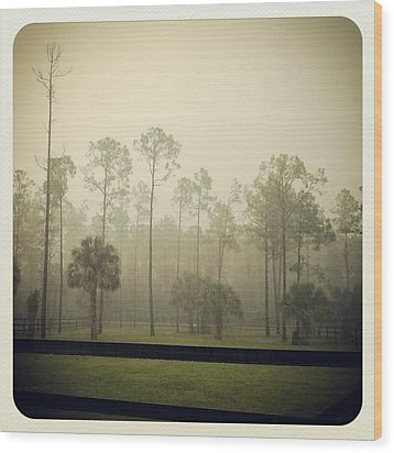 Break Of Dawn Wood Print by Chasity Johnson