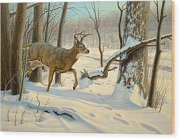 Breaking Cover-whitetail Wood Print by Paul Krapf