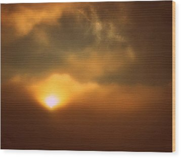 Breaking Through Wood Print by Shirley Sirois