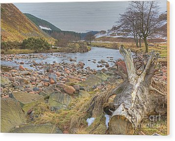 Breamish Valley Landscape Wood Print by David Birchall