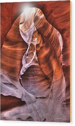 Breath Of Life Wood Print by David Andersen