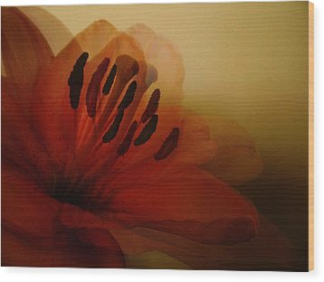 Breath Of The Lily Wood Print by Marianna Mills
