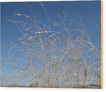 Wood Print featuring the photograph Breeze by Sara  Raber