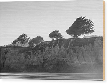 Wood Print featuring the photograph Breezy by Takeshi Okada