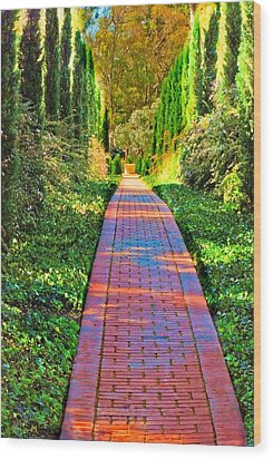 Wood Print featuring the photograph Brick Path by Joseph Hollingsworth