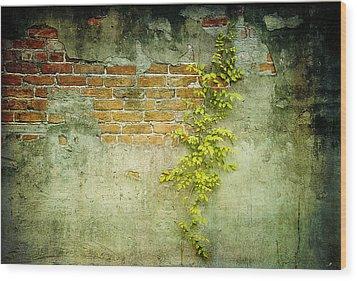 Brick Wall Wood Print by Linda Olsen