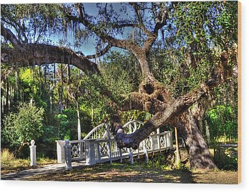 Bridge At Koreshan State Park - Estero Florida Wood Print by Timothy Lowry