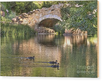 Wood Print featuring the photograph Bridge At Stow Lake by Kate Brown