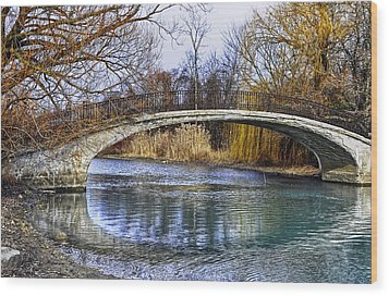 Bridge In The December Sun Wood Print by Rodney Campbell