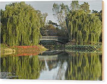 Bridge Of Reflection Wood Print by Leo Thomas Garcia