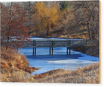 Wood Print featuring the photograph Bridge Over Icy Waters by Elizabeth Winter