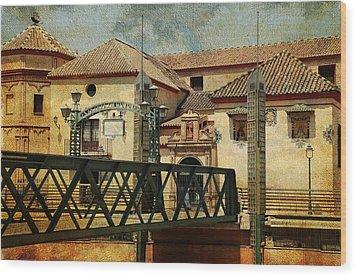Bridge Over The River Guadalmedina In Malaga I. Spain Wood Print by Jenny Rainbow