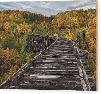 Bridge To Nowhere... Wood Print