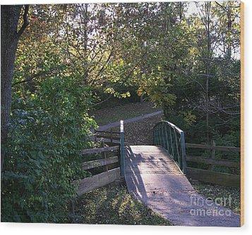 Bridge To Nowhere Wood Print by Mel Steinhauer