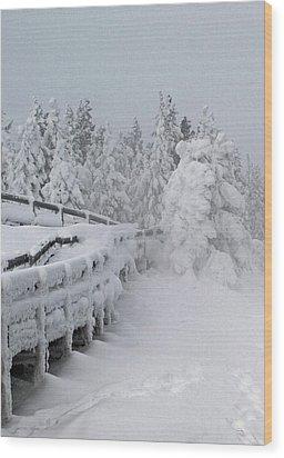 Bridges Of Yellowstone Wood Print by Philip Bracco