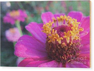 Bridgets Bloom Wood Print by Robert ONeil