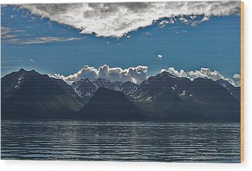 Wood Print featuring the photograph Bright And Cloudy by Aimee L Maher Photography and Art Visit ALMGallerydotcom