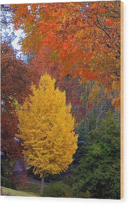 Bright Autumn Wood Print