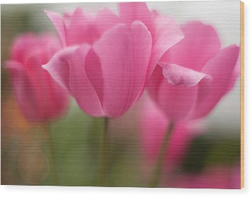 Bright Bunch Of Tulips Wood Print by Mike Reid