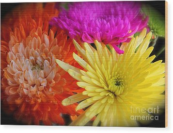 Bright Chrysanthemums Wood Print by The Art of Alice Terrill