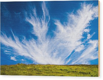 Bright Green Meadow And Deep Blue Sky Wood Print by Matthias Hauser