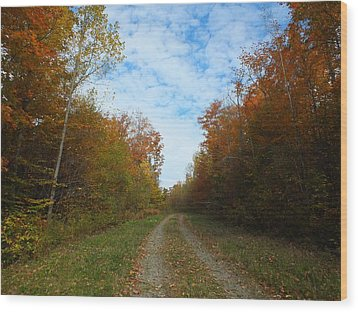 Bright Trail Wood Print by Gene Cyr