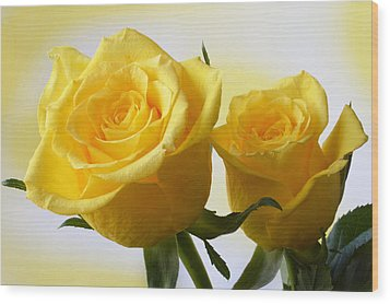 Bright Yellow Roses. Wood Print by Terence Davis