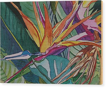 Brillant Bird Of Paradise Wood Print by Terry Holliday