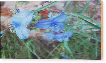 Wood Print featuring the photograph Brilliant Blue Flowers by Cathy Anderson