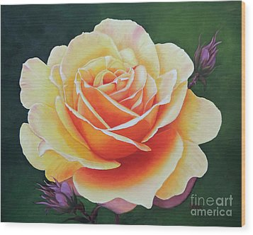 Brilliant Rose Wood Print by Jimmie Bartlett