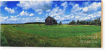 Wood Print featuring the photograph Brimley Farm Near  Sault Ste Marie Michigan  by Tom Jelen