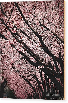 Bring On Spring Wood Print by Christy Ricafrente