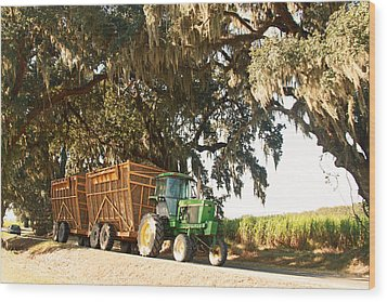 Bringing Sugarcane Ton The Mill Wood Print by Ronald Olivier