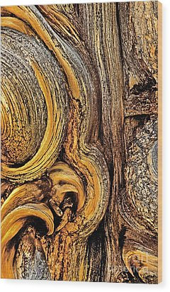 Wood Print featuring the photograph Bristlecone Pine Bark Detail White Mountains Ca by Dave Welling