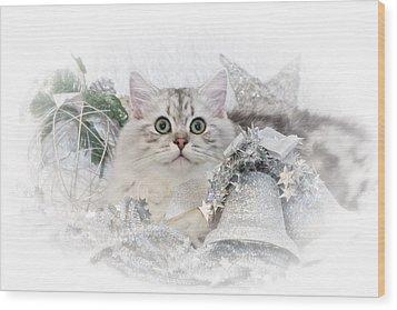 British Longhair Cat Christmas Time II Wood Print by Melanie Viola