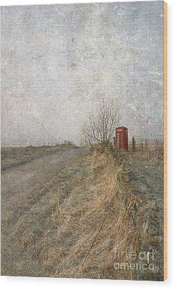 British Phone Box Wood Print by Liz  Alderdice