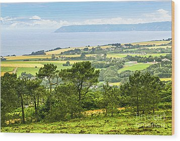 Brittany Landscape With Ocean View Wood Print by Elena Elisseeva
